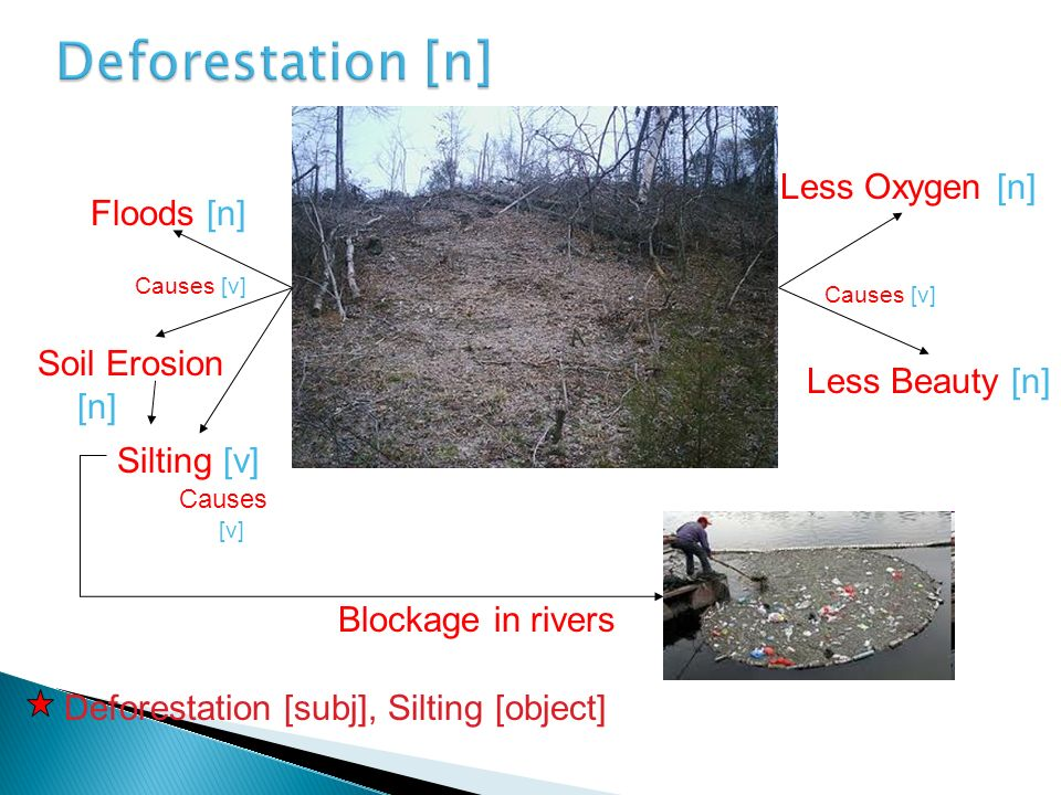 Deforestation [n] Less Oxygen [n] Floods [n] Soil Erosion [n]